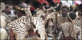 Fur and skin trade - Fur coat wearing leopard skins